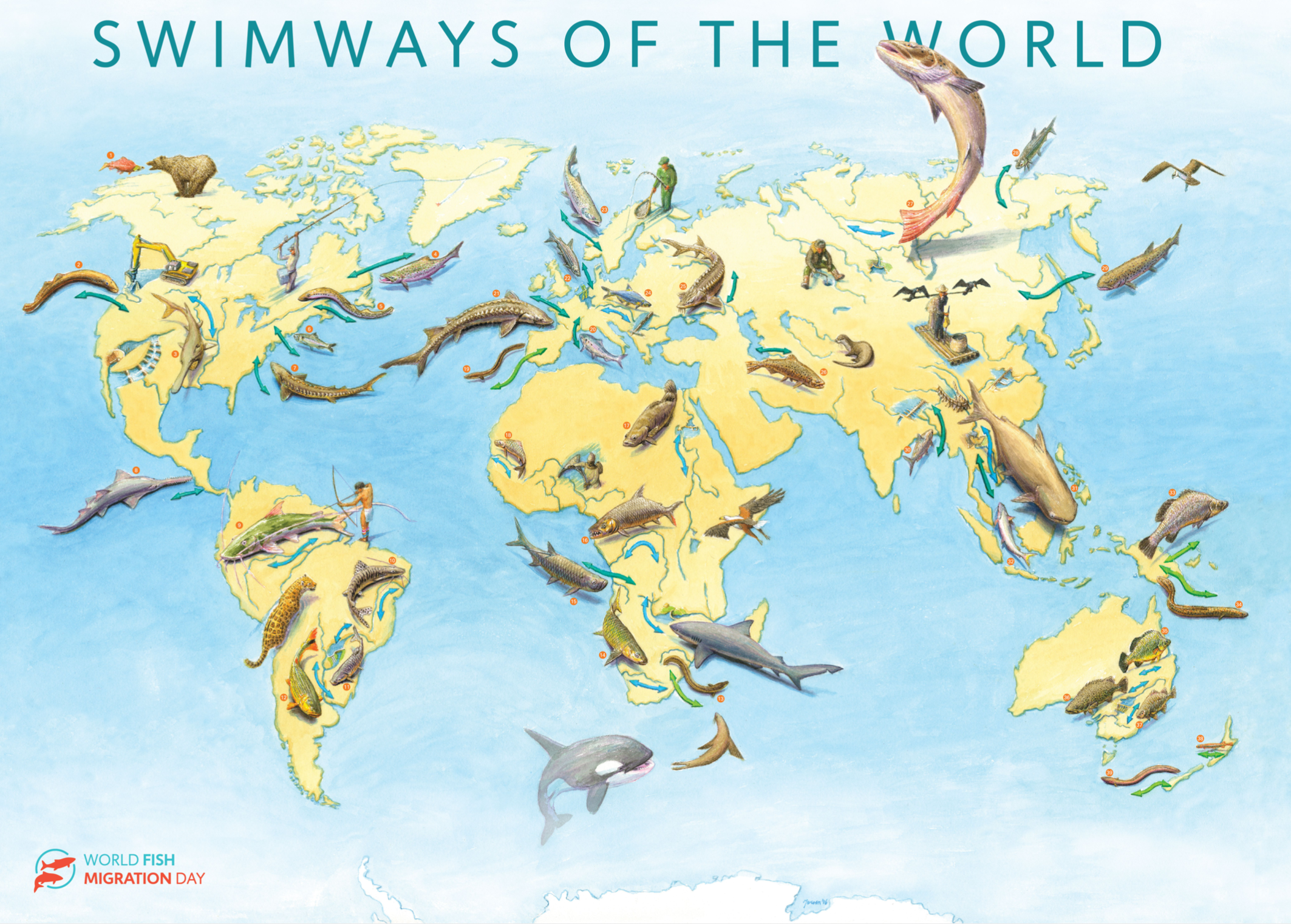 Swimways_of_the_world